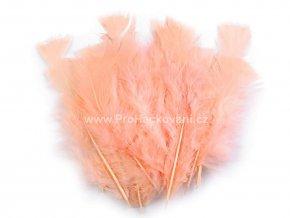 peříčka 11-17 cm Korálově růžová