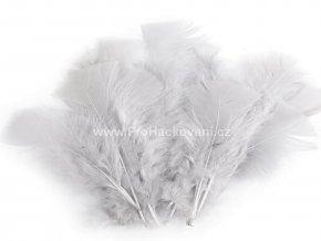 peříčka 11-17 cm Nejsvětlejší šedá