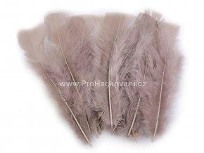 Peříčka 11-17 cm fialově hnědá
