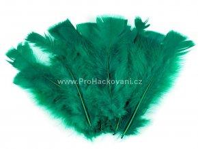 peříčka 11-17 cm tmavě zelená