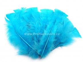 peříčka 11-17 cm Sytě modrá