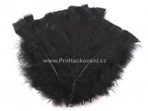 peříčka 11-17 cm Černá