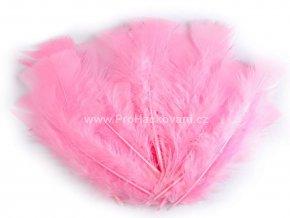 peříčka 11-17 cm Jemná růžová