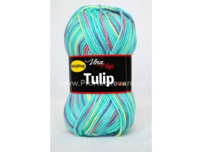 Tulip color 5605 variace tyrkys
