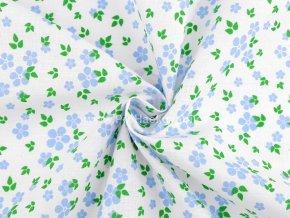 latka modre kvety se zelenymi listky 1