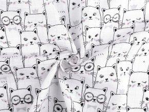 Plenkovina kočky