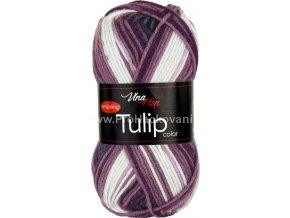 Tulip color 5214 variace krémové, fialové, šedé