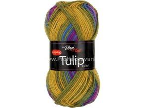 Tulip color 5211 variace okrové, fialové, petrolejové, růžové