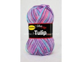 Tulip color 5606 fialková variace