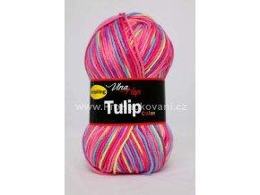 Tulip color 5601 růžové variace
