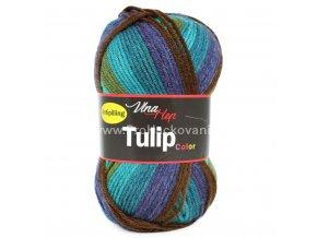 Tulip color 5201 země a moře