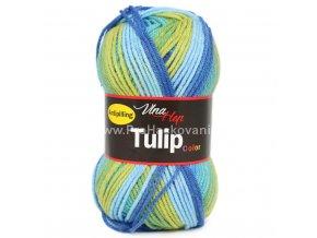 Tulip color 5202 modrá a žlutá