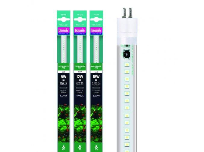 Arcadia Freshwater T5 LED 24W 8000K 550mm