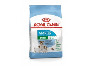 royal canin mini starter puppy
