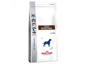 52555 PLA Royal Canin Gastro Intestinal 5 5
