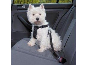 Postroj do auta pro psa
