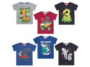 Narozeninové tričko chlapecké 1-6