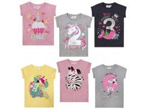 Narozeninové tričko dívčí 1-6