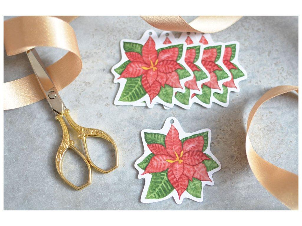 Vánoční dárkové cedulky Hvězda