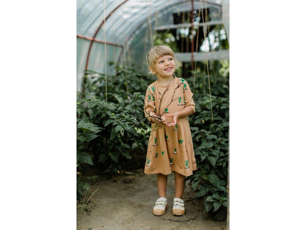 zeleninky saty (1)