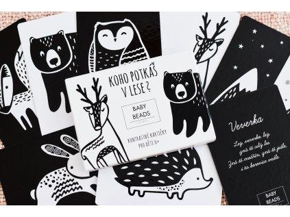 9 vysoce kontrastních kartiček vhodných pro děti od narození.