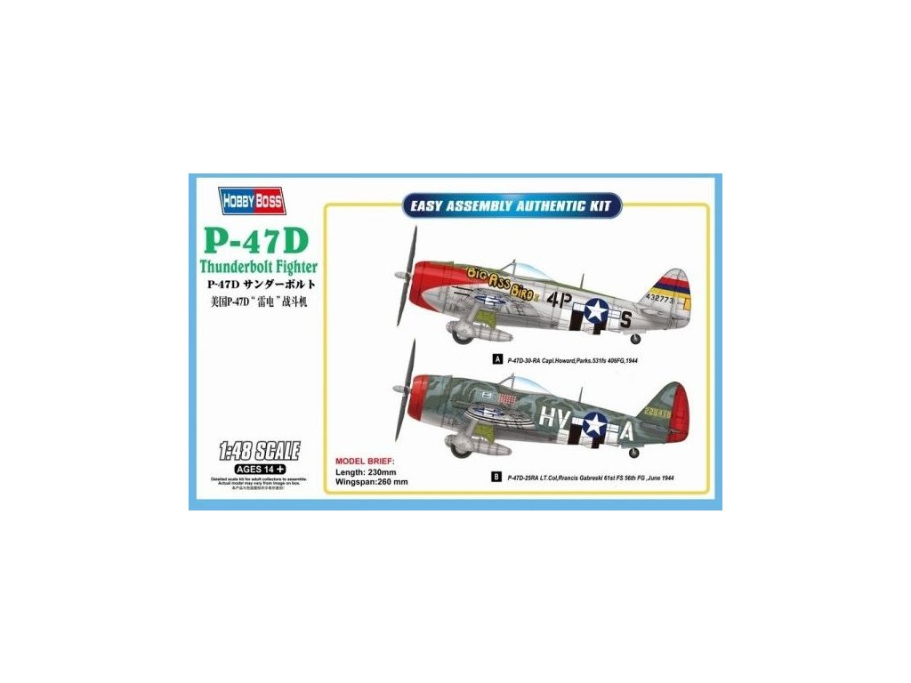 Republic P-47D Thunderbolt Fighter 1:48