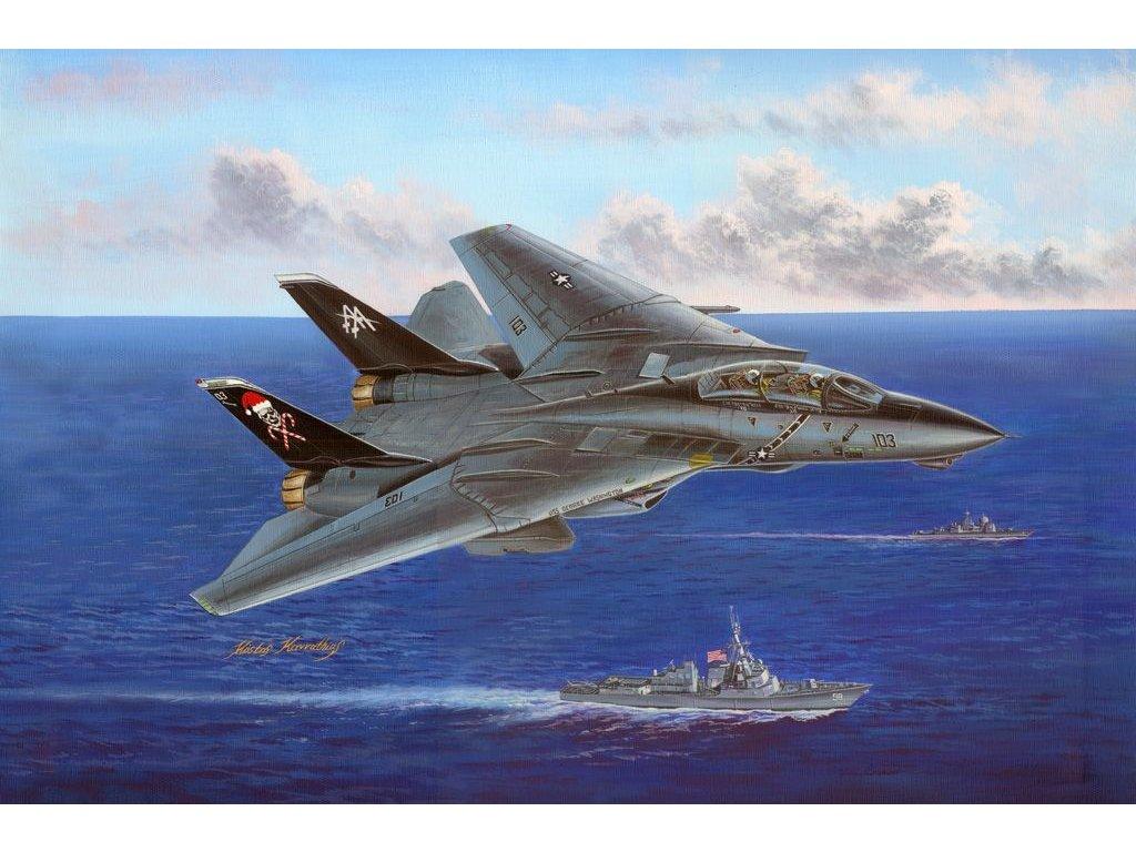F-14B Tomcat 1:48
