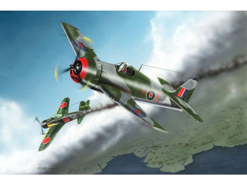 British Fleet Air Hellcat Mk.I 1:48
