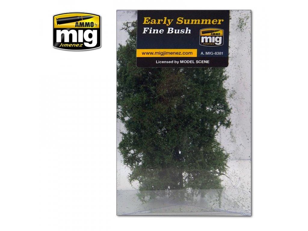 fine bush early summer