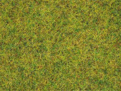 Posyp tráva letná lúka 2,5 mm 20 g