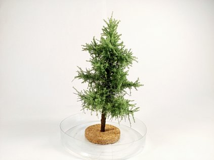 Ihličnatý strom 11cm