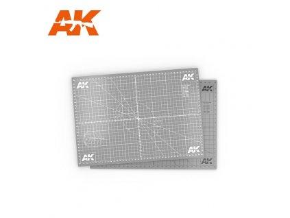 AK8209 A4 1