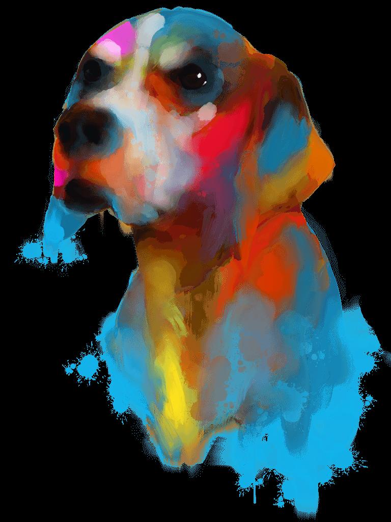 Balení IR vhodná pro psy