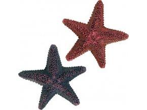 Barevné dekorativní hvězdice [12ks/ bal]