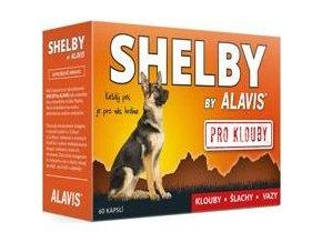 Alavis SHELBY pro Klouby 60cps