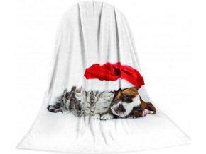 Deka TEXSTAR mikrovlákno 280g 150 x 200 cm - kotě a štěně vánoč