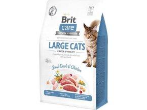 Brit Care Cat GF Large cats Power&Vitality 0,4kg