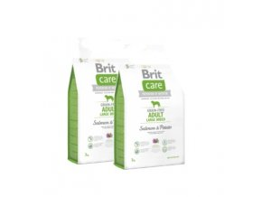 Brit Care Grain-free Adult LB Salmon & Potato 2x12kg