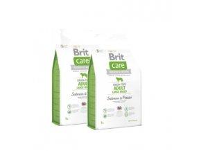 Brit Care Grain-free Adult LB Salmon & Potato 2x12kg
