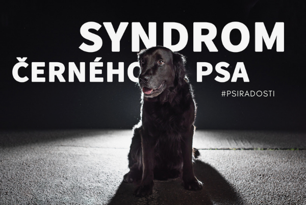 Syndrom černého psa
