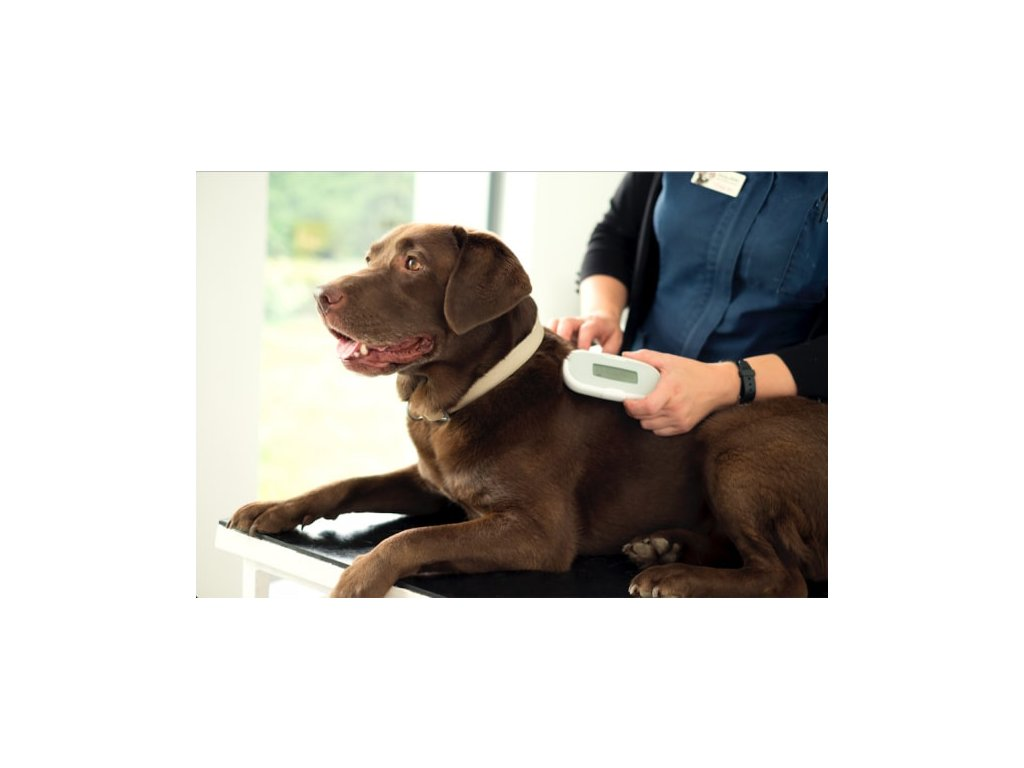 Čtečka čipů SureSense pro psy a jiné mazlíčky