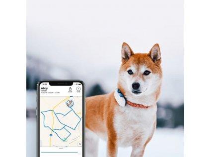 Tractive GPS DOG 4 – GPS sledování polohy a aktivity pro psy