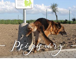 Realizace psích pisoárů
