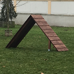 Psi_park_Brno_Reckovice_03
