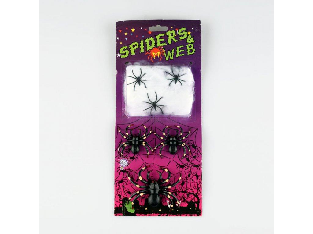 pavouk a pavucina