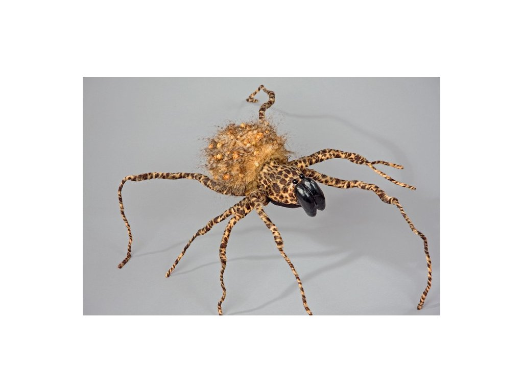 pavouk 5158