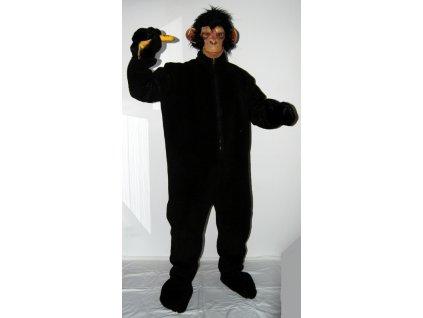 Kostym simpanz