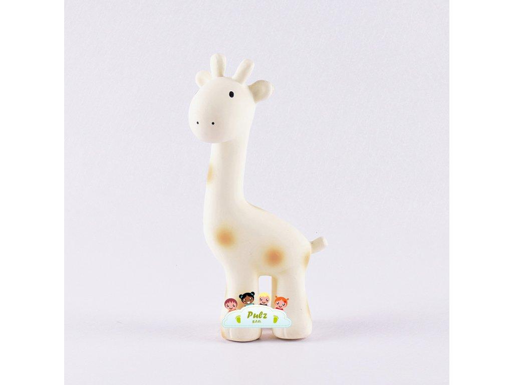 Tikiri Safari – chrastítko a kousátko z přírodního kaučuku - Žirafka