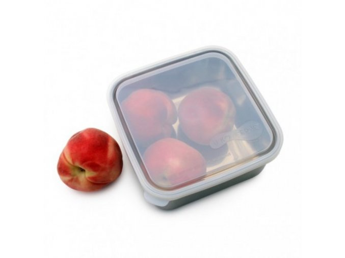to go container large clear 1