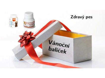 Vánoční balíček zdravý pes